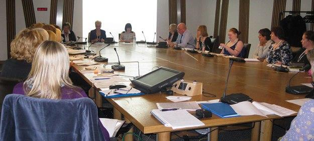 SMSDN meeting at the Scottish Parliament